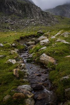 wanderthewood:   Cwm Idwal, Snowdonia, Wales by... - Forest Witch