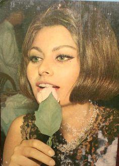 Sophia Loren - celebrity inspiration for dark brown hair and hazel eyes