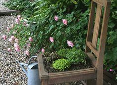 Idée récup' : un siège jardinière de plantes de rocaille