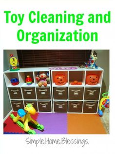 toy cleaning and org