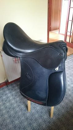 Pye's Saddle after cleaning with Aloe hand and face soap.. scrubs up lovely! Facebook : Forever Living - Animal Health