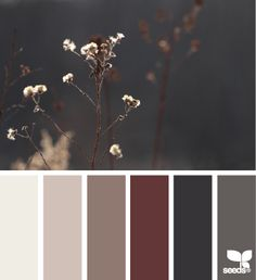 In love with this color pallet inspired by the rich hues of nature. Yes, please. #xtraroom #designinspiration