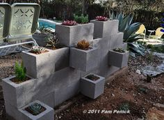 concrete block mini wall/garden