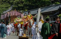 The annual Aoi Matsuri (葵祭) of Shimogamo-Shrine (下鴨神社) and Kamigamo-Shrine (上賀茂神社) in the Old Heian Capital of Japan, Kyoto! Its actual name is Kamo Festival. Along with the Gion Festival and the Jidai Matsuri (Festival of Ages), it is one of the three big festivals in Kyoto. #AoiMatusri, #葵祭, #Kyoto, #SaiōDai, #KyotoImperialPalace, #京都御所,