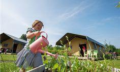 Je eigen  #moestuintje verzorgen op #FarmCamps De Kamperhoek bij de #safaritent ! Kids, Young Children, Boys, Children, Boy Babies, Child, Kids Part, Kid, Babies