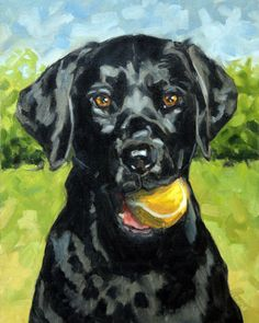 Animal Art On Pinterest Pet Portraits Dog Portraits And