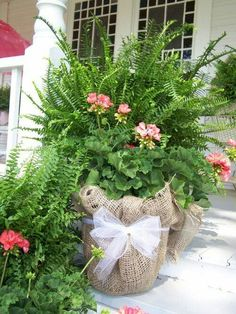 5 gallon bucket, burlap and ribbon. Love with geraniums and ferns.