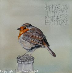 Those We Love Don't Go Away, They Walk Beside Us Everyday - Sam Cannon Art. Love this artist & this quote makes me think of my mum & dad ❤️ Sam Cannon, Collateral Beauty, Bird Art, Bird Feathers, Watercolor Art, Watercolour Paintings, Illustration Art, Sketches, Birds