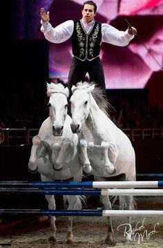 Roman Riding Bridleless? Okay, I guess I'm impressed... wow haha.
