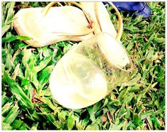 govino wine glasses out and about at the botanical gardens