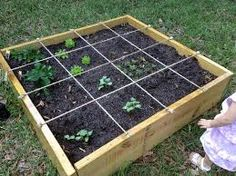 raised garden - Google Search