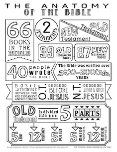 Creative Sunday School Crafts: Anatomy of the Bible Coloring Page. - Creative Sunday School Crafts: Anatomy of the Bible Coloring Page. The Effective Pictures We Offer - Bible Study For Kids, Bible Lessons For Kids, Scripture Study, Bible Bible, Books Of Bible, Primary Lessons, Kids Sunday School Lessons, Sunday School Crafts, Sunday School Games