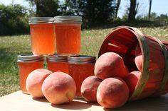 White Peach Preserves 8 oz Jam Jelly Homemade Half Pint - pinned by pin4etsy.com