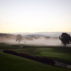 Morning for settling on the golf course.