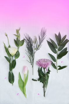 floral arrangement how-to!