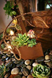 35 best masculine flowers images decorating ideas fall home decor rh pinterest com