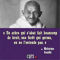 """""""Un arbre qui s'abat fait beaucoup de bruit, une forêt qui germe, on ne l'entend pas"""". - Mahatma Gandhi."""