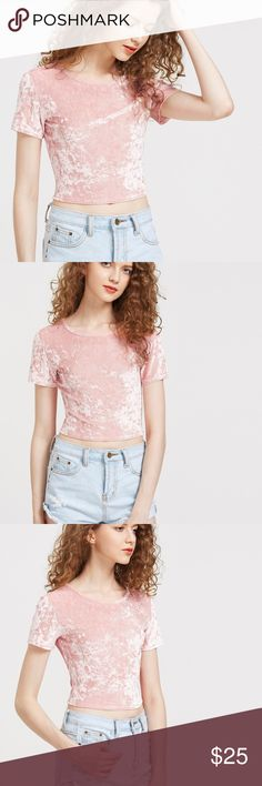 🎉Brand New🎉 Pink Velvet Crop NWOT 🎉Brand New🎉 Pink Velvet Crop- never worn Tops Crop Tops