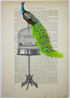 Peacock on birdcage - ORIGINAL ARTWORK Mixed Media, Hand Painted on 1920 famous Parisien Magazine 'La Petit Illustration'  - by Coco de Paris