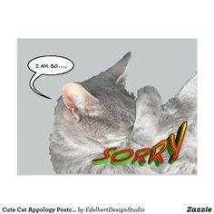 Cute Cat Appology Postcard