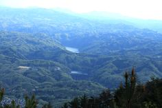 Takayama Dam with green forest