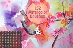 152 Watercolor Brushes by Arys Design on @creativemarket