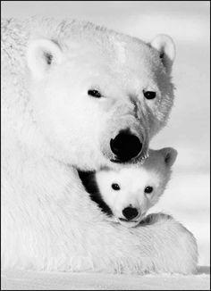 Чёрно- белое семейное фото