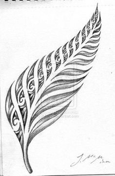 Design Nz Tattoo Fern Tatoo Art Tattoo New Zealand Fern Tattoo ...