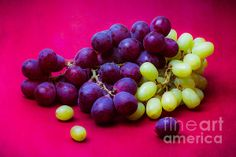 Grapes White And Red. Closeup view of two bunches of white and red grapes against purple textured background. Stylized photography. Still life of ftuits. - Mankind... possesses two supreme blessings. First of these is the goddess Demeter, or Earth whichever name you choose to call her by. It was she who gave to man his nourishment of grain.