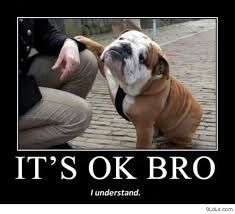 funny animal quotes and sayings - Google Search