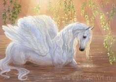White Pegasus in the marsh