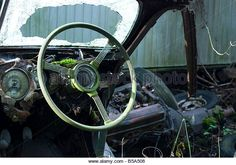 The steering wheel of an old car at the junkyard is green from moss and algae ; Autofriedhof Gurbetal, Kaufdorf, - Stock Image