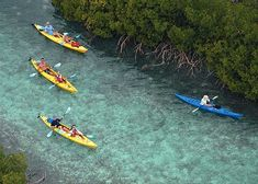 Kayaking in the Princess Alexandra Nature Reserve, Providenciales (Provo), Turks and Caicos Islands >> Must do!