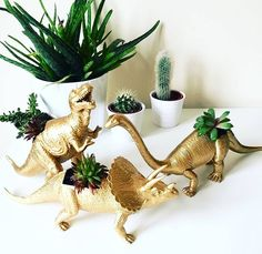 "2,196 Likes, 37 Comments - Creative & handmade community (@craftsposure) on Instagram: ""🌵 Does it get better than succulents and dinos? @katescraftworld knows how it's done 🌿🌱 l Click on…"""