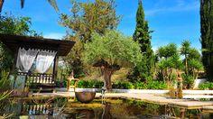 Gorgeous organic swimming pool in Ibiza Ibiza, Swimming Pools, Wanderlust, Organic, Patio, Outdoor Decor, Image, Home Decor, Homemade Home Decor