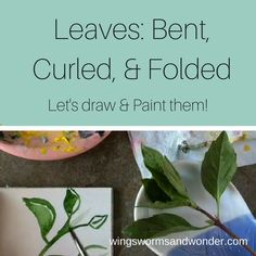 Leaves are so interesting, and make great nature journal practice. Click to try a fun Wings, Worms, and Wonder leaf painting video tutorial!