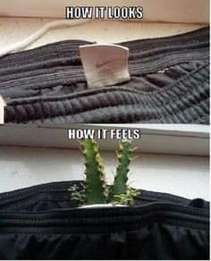 So true have to cut all tags off my clothes they drive me crazy -: Humor Train