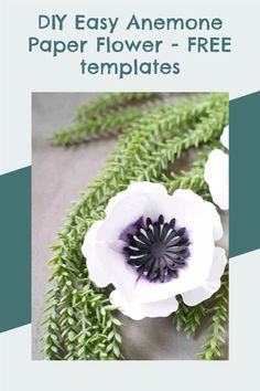 Easy paper flower templates, free svg, cricut paper project