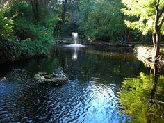 The Park - El Parque