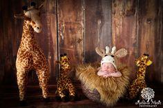 Newborn Giraffe photography