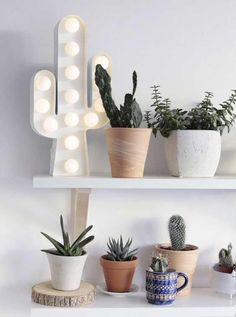 Terrific Photo cactus plants bedroom Style Plants plus cacti are classified as the excellent house furnishings to get minimalists along with tendency se Green Bedroom Decor, Cactus Bedroom, Bedroom Plants, Light Bedroom, Bedroom Ideas, Decoration Cactus, Decoration Plante, Planet Decor, Cactus House Plants