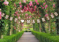 Pour mariage Inscription Just Married Style Vintage en carton pour décoration de mariage Wedding Touches http://www.amazon.fr/dp/B011IXNG8K/ref=cm_sw_r_pi_dp_wb1Owb0BG3PZY