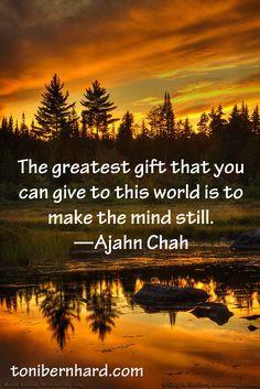 Ajahn Chah Quote