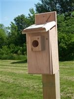 Bluebird Box Screen Top. This is our most popular house and comes with a 3 inch screened opening in the roof. The guard around the entry keeps predators out. Complete with easy side cleanout and plexiglas nest holder. Mount in open areas 6-10 ft. high.  #bluebirdbox #bluebirdhouse #birdhouse #birdhouses
