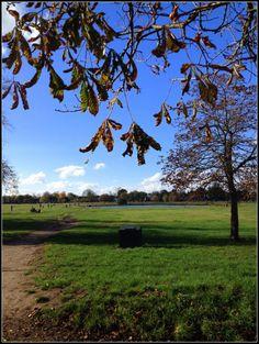 Wimbledon Village Park - http://fromlondonwithlove.com/