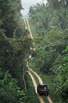 Conducir en la selva tropical, Lubaantún, Distrito de Toledo, Belice, América Central