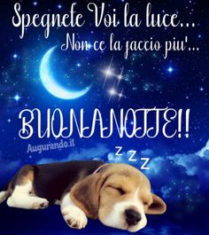 Good Morning Good Night, Day For Night, New Years Eve Party, Improve Yourself, Facebook, Genere, Beagle, Biscotti, Blog