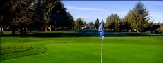 Capitol City Golf Course Lacey WA