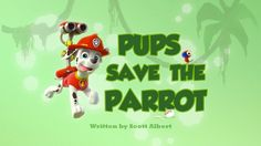 New Paw Patrol Pups Save The Parrot | Paw Patrol Full Episodes English 2016