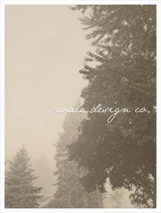 [coale design co.]